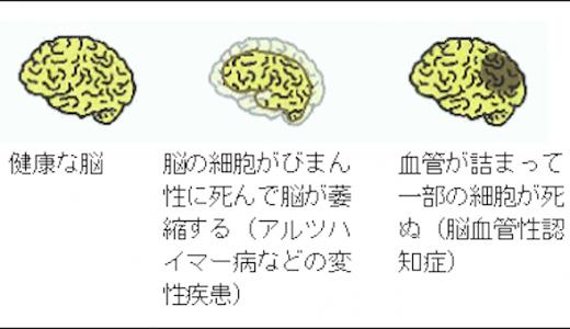 認知症専門医 大下 智彦 082-815-5211